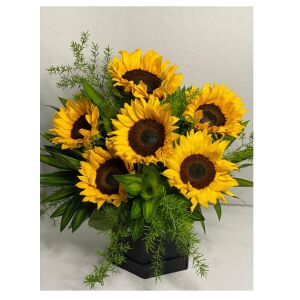 6 Sunflowers in a box